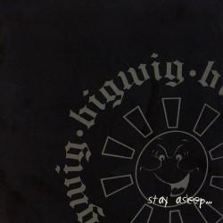 Bigwig - Stay Asleep - LP