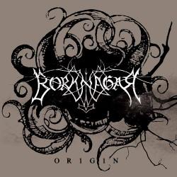 Borknagar - Origin - LP COLOURED