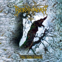 Borknagar - The Olden Domain - CD