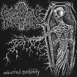 Cadaveric Incubator - Unburied Morbidity - LP