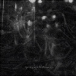 Dark Opus - Ignominious Fundamentals - CD EP digisleeve