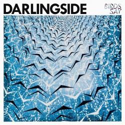 Darlingside - Birds Say - DOUBLE LP Gatefold