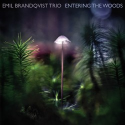 Emil Brandqvist Trio - Entering The Woods - CD DIGIPAK