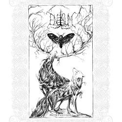 Enisum - Moth's Illusion - DOUBLE LP Gatefold
