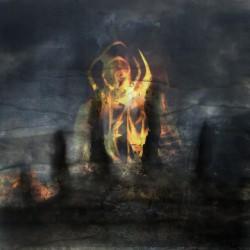 Fen - Carrion Skies - CD