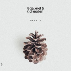 Gabriel & Dresden - Remedy - DOUBLE LP Gatefold