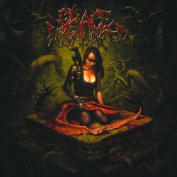 Grace Disgraced - The Primal Cause : Womanumental - CD