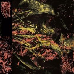 Hissing - Permanent Destitution - CD DIGIPAK