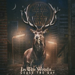 In The Woods - Cease The Day - DOUBLE LP Gatefold