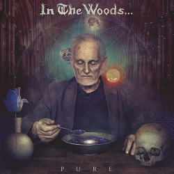 In The Woods - Pure - CD DIGIPAK
