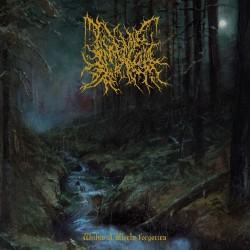 Infernal Coil - Within A World Forgotten - CD DIGIPAK