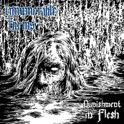 Innumerable Forms - Punishment In Flesh - CD