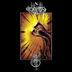 Insanity Cult - Void Omnia - Contemplation In Discordance - LP