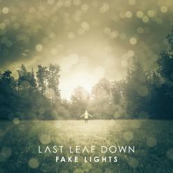 Last Leaf Down - Fake Lights - CD