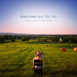 Mary Chapin Carpenter - Sometimes Just The Sky - DOUBLE LP Gatefold