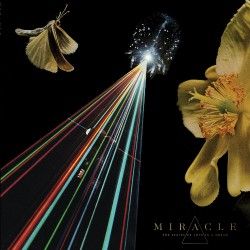 Miracle - The Strife Of Love In A Dream - LP