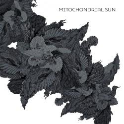 Mitochondrial Sun - Mitochondrial Sun - LP COLOURED