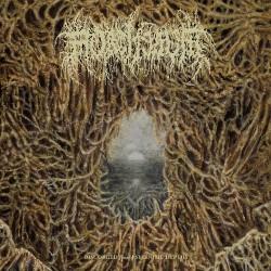 Mortiferum - Disgorged From Psychotic Depths - LP