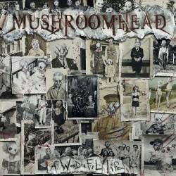 Mushroomhead - A Wonderful Life - CD DIGIPAK