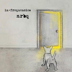 NRBQ - In Frequencies - LP