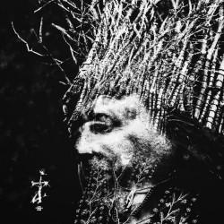 Negura Bunget - ZI - LP Gatefold