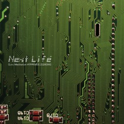 Next Life - Guru Meditation - LP