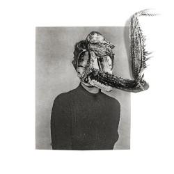 Obsidian Kingdom - Mantiis – An Agony in Fourteen Bites - CD