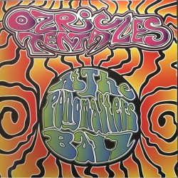 Ozric Tentacles - At The Pongmasters Ball - DOUBLE LP