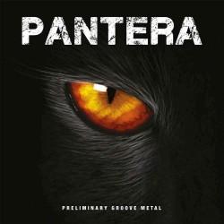Pantera - Preliminary Groove Metal - LP Gatefold