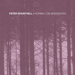Peter Bruntnell - Normal For Bridgwater - LP COLOURED