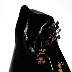 Process Of Guilt - Blackearth - LP