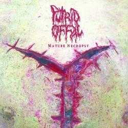 Putrid Offal - Mature Necropsy - LP