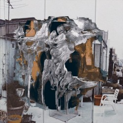 Roamer - What The Hell - LP