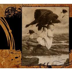 Se Delan - The Fall - DOUBLE LP Gatefold