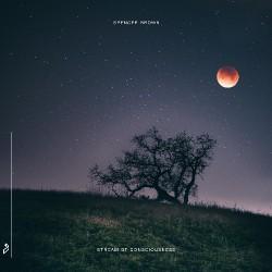 Spencer Brown - Stream Of Consciousness - CD DIGIPAK