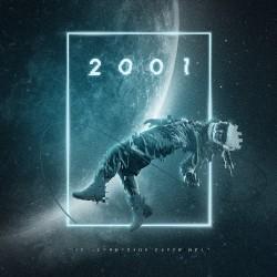 The Kompressor Experiment - 2001 - DOUBLE LP COLOURED