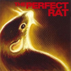 The Perfect Rat - Endangered Languages - CD