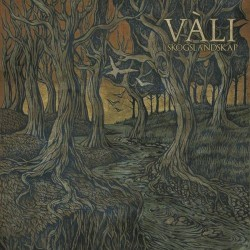 Vàli - Skogslandskap - CD DIGIPAK