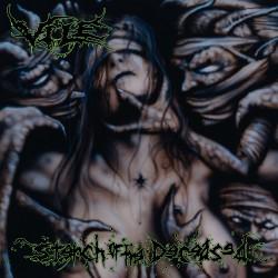 Vile - Stench Of The Deceased - LP