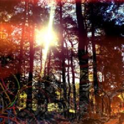 Viviankrist - Cross Modulation - Bootleg Remixes - LP