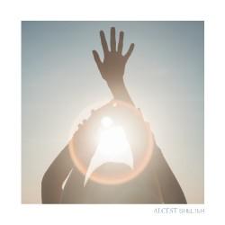 Alcest - Shelter - LP
