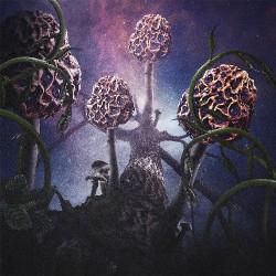 Blut Aus Nord - Hallucinogen - CD DIGIPAK SLIPCASE