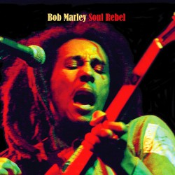 Bob Marley - Soul Rebel - LP COLOURED