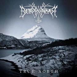 Borknagar - True North - CD DIGIPAK