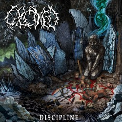Calcined - Discipline - CD