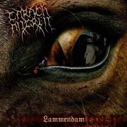 Carach Angren - Lammendam - CD