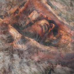 Converge - Unloved and Weeded Out - CD DIGIPAK