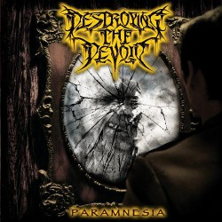 Destroying The Devoid - Paramnesia - CD