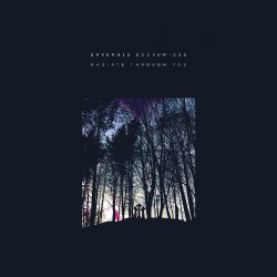 Ensemble Economique - Radiate Through You - CD DIGIPAK