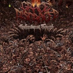 Grace Disgraced - Enthrallment Graced - CD